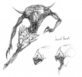 Enigma insectbeast sketch.jpg